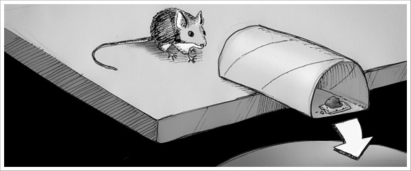 How to catch a mouse without a mousetrap